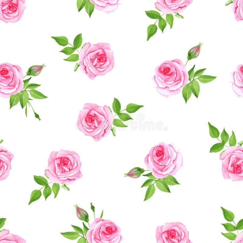 Άνευ ραφής διανυσματική τυπωμένη ύλη watercolor τριαντάφυλλων πολυτέλειας διανυσματική απεικόνιση