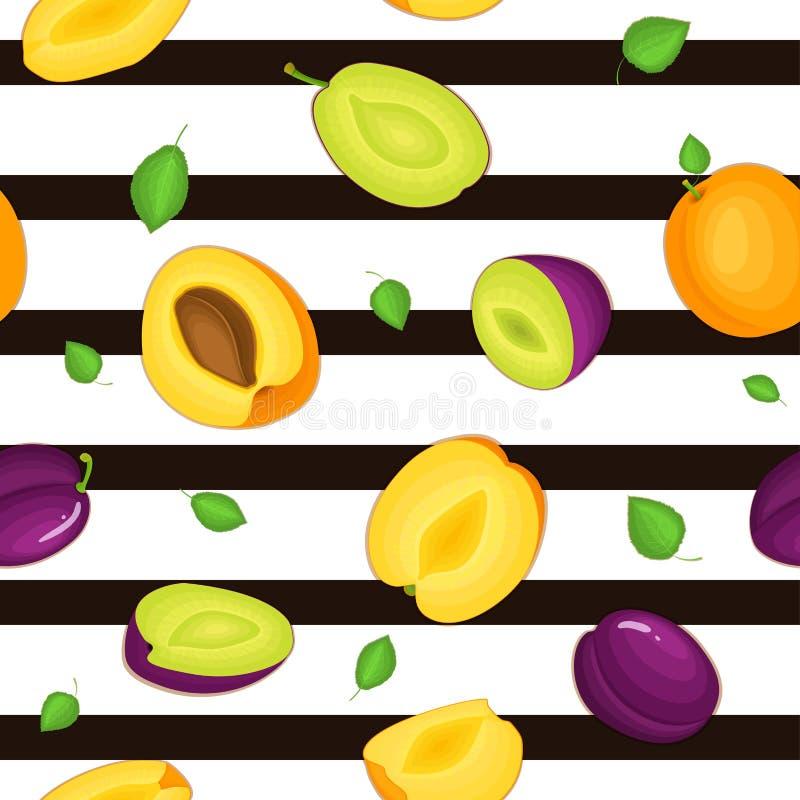 Άνευ ραφής διανυσματικό σχέδιο των ώριμων φρούτων βερίκοκων δαμάσκηνων Ριγωτό υπόβαθρο με το εύγευστο juicy ολόκληρο φύλλο βερίκο διανυσματική απεικόνιση