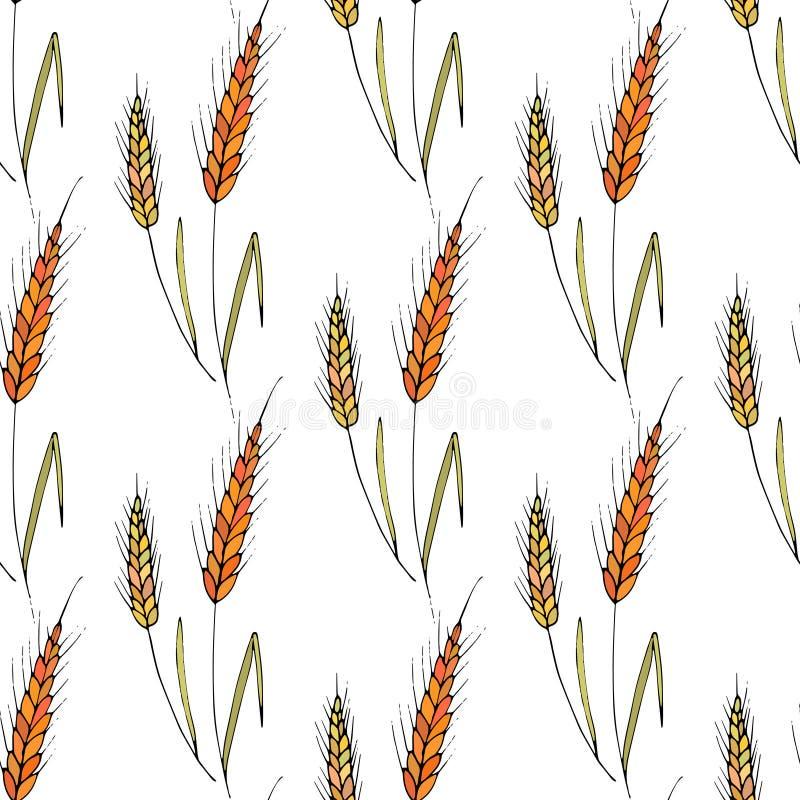 Άνευ ραφής διανυσματικό υπόβαθρο με spikelets σίτου διανυσματική απεικόνιση