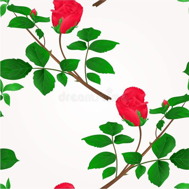 Άνευ ραφής κόκκινος μίσχος μπουμπουκιών τριαντάφυλλου σύστασης με το εκλεκτής ποιότητας διάνυσμα φύλλων και ανθών διανυσματική απεικόνιση