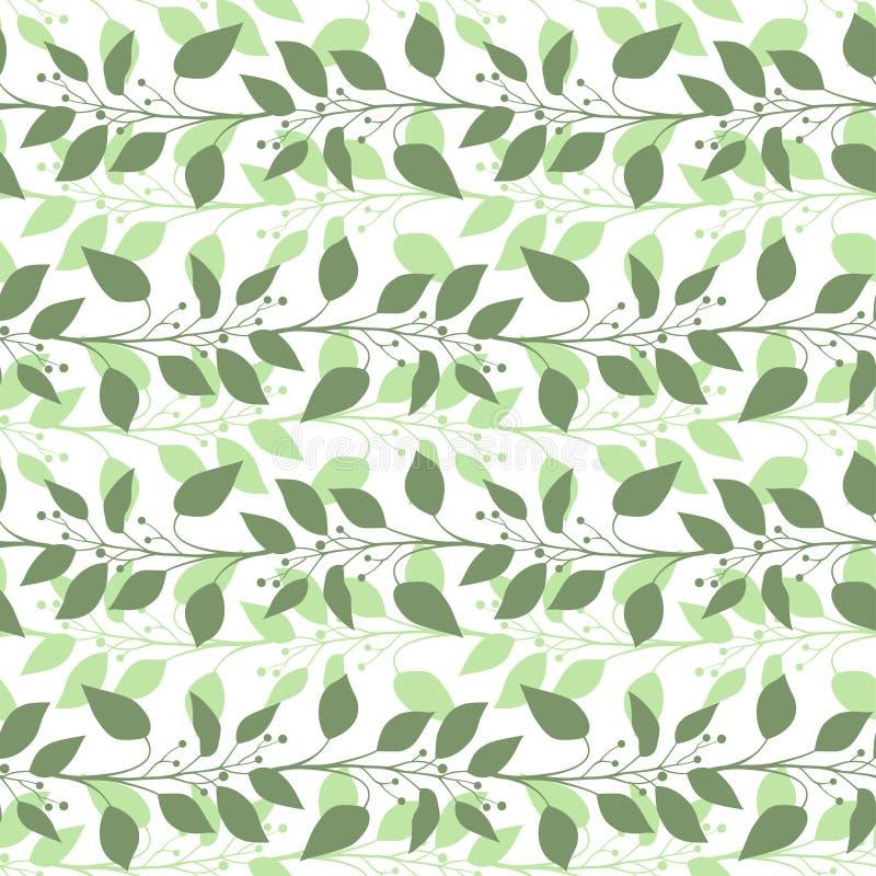 Άνευ ραφής κλάδοι σχεδίων και φύλλα της δάφνης καμφοράς λεπτομερές ανασκόπηση floral διάνυσμα σχεδίων διάνυσμα απεικόνιση αποθεμάτων