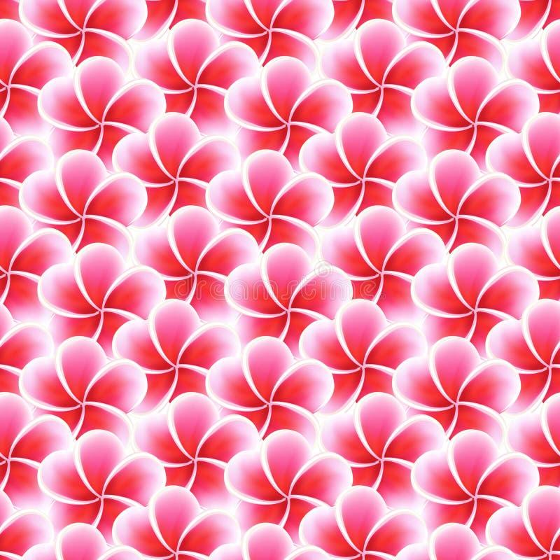Άνευ ραφής λουλούδια Plumeria Όμορφο τροπικό υπόβαθρο σχεδίων υφάσματος ζουγκλών ελεύθερη απεικόνιση δικαιώματος