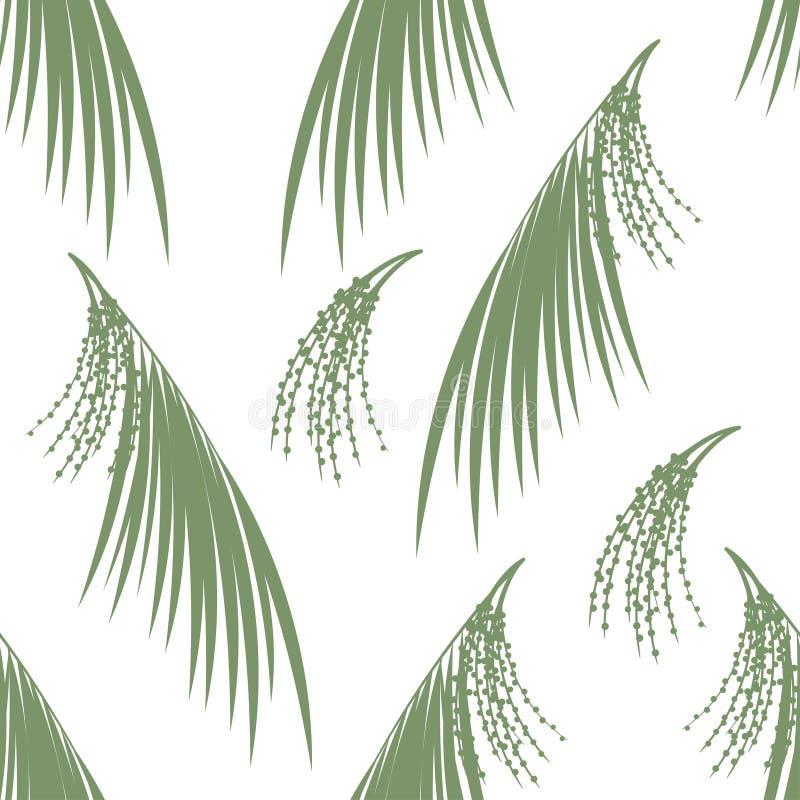 Άνευ ραφής μούρα σχεδίων και φύλλα του φοίνικα Acai λεπτομερές ανασκόπηση floral διάνυσμα σχεδίων επίσης corel σύρετε το διάνυσμα απεικόνιση αποθεμάτων