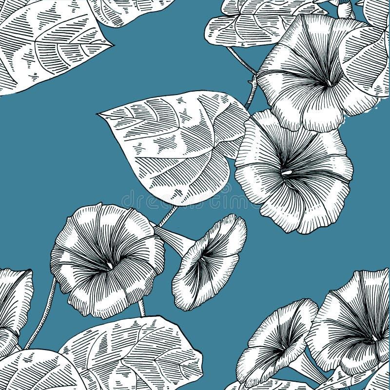 Άνευ ραφής μπλε σχέδιο με τη δόξα πρωινού E graphics διανυσματική απεικόνιση