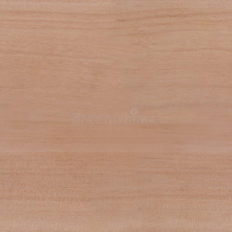 Άνευ ραφής ξύλινη σύσταση δέντρων στοκ εικόνες
