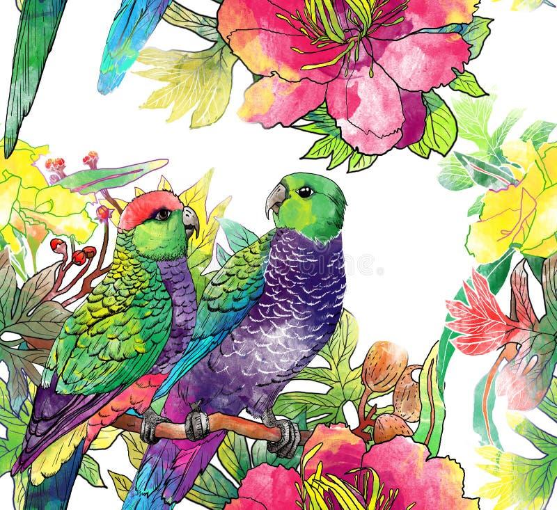 Άνευ ραφής πρότυπο με τους παπαγάλους και τα λουλούδια απεικόνιση αποθεμάτων