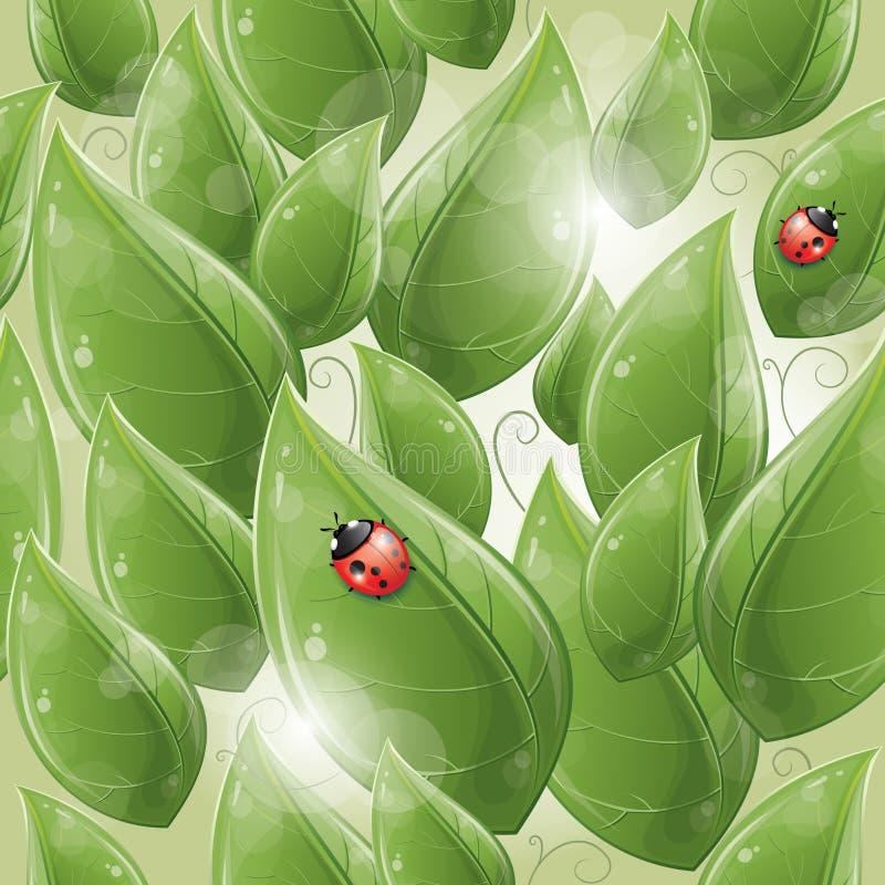 Άνευ ραφής πρότυπο - πράσινα φύλλα και ladybug ελεύθερη απεικόνιση δικαιώματος