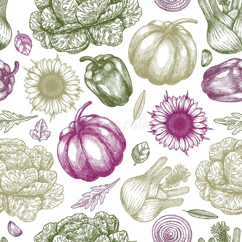 Άνευ ραφής πρότυπο φρέσκων λαχανικών Εκλεκτής ποιότητας λαχανικά Handsketched τέχνη εξαρτημάτων μοντέρνη η γυναίκα γραμμών απεικό ελεύθερη απεικόνιση δικαιώματος