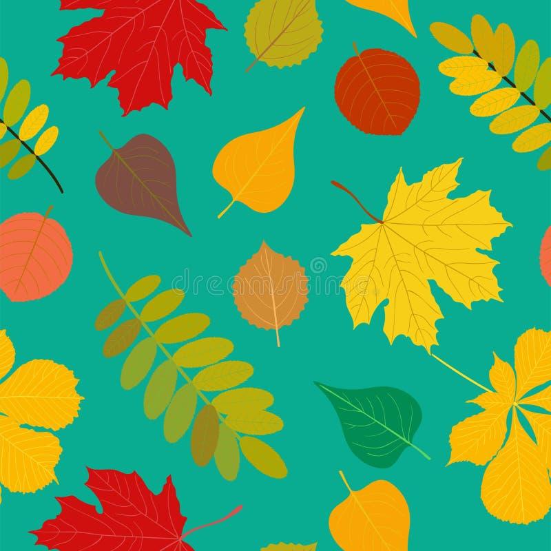 Άνευ ραφής σορβιά πτώσης σχεδίων φθινοπώρου πορτοκαλιά, κίτρινα, καφετιά κόκκινα δασικά, σημύδα, φύλλα δέντρων και χορτάρια Ταπετ διανυσματική απεικόνιση