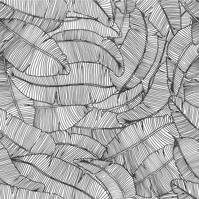 Άνευ ραφής συρμένο χέρι σχέδιο με μπανανών βοτανική διανυσματική απεικόνιση σύστασης φύλλων την τροπική απεικόνιση αποθεμάτων