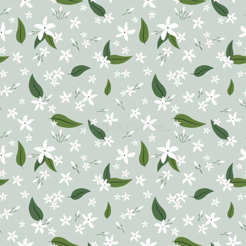 Άνευ ραφής σχέδιο λουλουδιών και φύλλων της Jasmine απεικόνιση αποθεμάτων