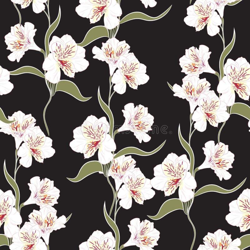 Άνευ ραφής σχέδιο λουλουδιών με τα όμορφα άσπρα και ρόδινα λουλούδια κρίνων alstroemeria απεικόνιση αποθεμάτων