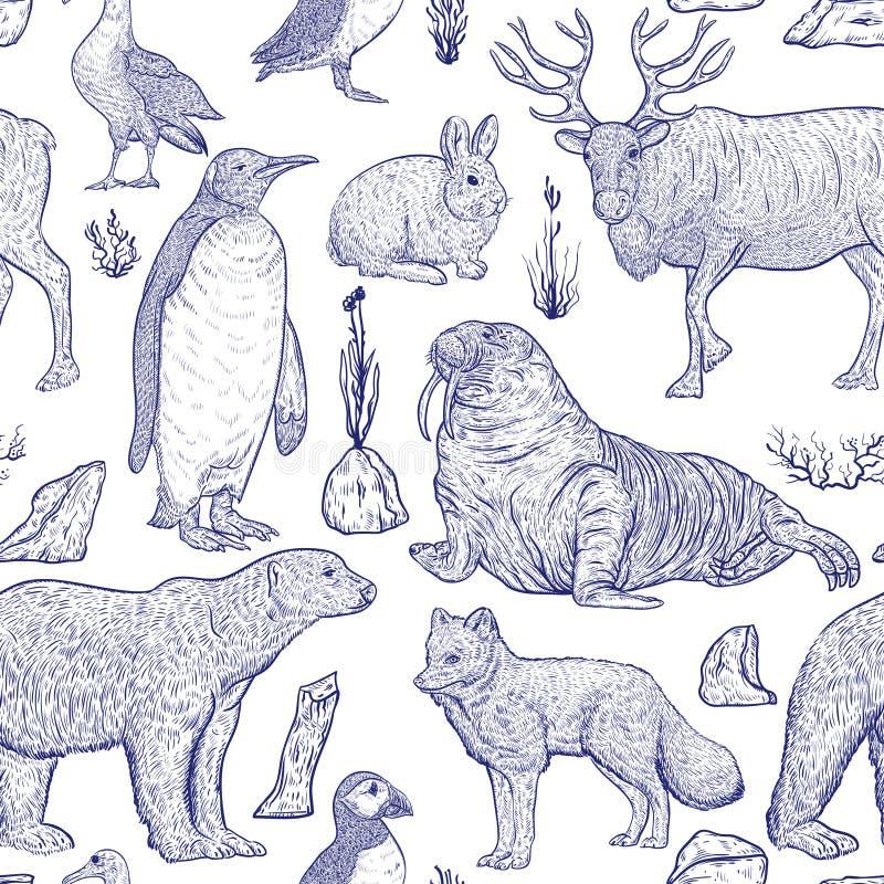 Άνευ ραφής σχέδιο με τα αρκτικά ζώα ελεύθερη απεικόνιση δικαιώματος