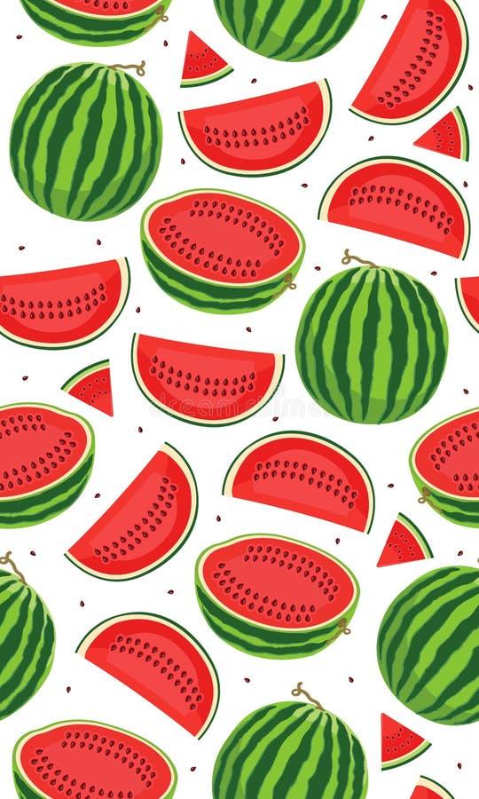 Άνευ ραφής σχέδιο με τα καρπούζια, φέτα του καρπουζιού στο άσπρο υπόβαθρο, τροπικό σχέδιο φρούτων απεικόνιση αποθεμάτων