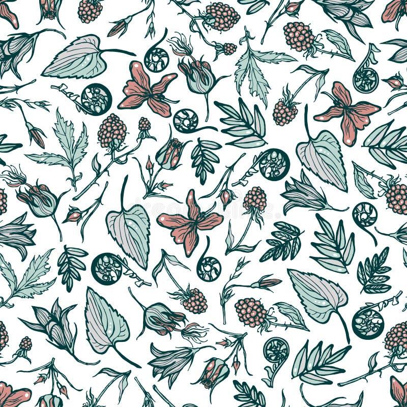 Άνευ ραφής σχέδιο με τα λουλούδια μούρων άγριων εγκαταστάσεων ανασκόπηση βοτανική Cloudberry ιώδεις φτέρες Geum Rivale bluebells  διανυσματική απεικόνιση