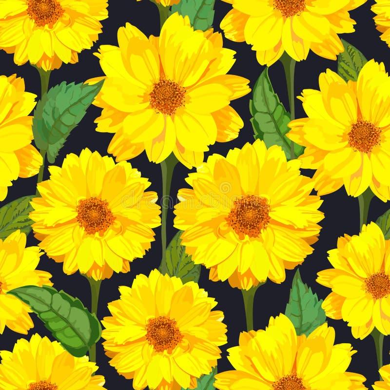 Άνευ ραφής σχέδιο με τα λουλούδια χρυσάνθεμων Διανυσματικό floral σύνολο διανυσματική απεικόνιση