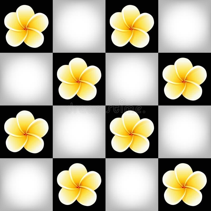 Άνευ ραφής σχέδιο με τα λουλούδια Plumeria Frangipani στη γραπτή σκακιέρα ελεύθερη απεικόνιση δικαιώματος