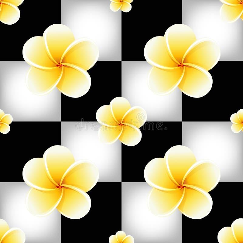 Άνευ ραφής σχέδιο με τα λουλούδια Plumeria Frangipani στη γραπτή σκακιέρα απεικόνιση αποθεμάτων