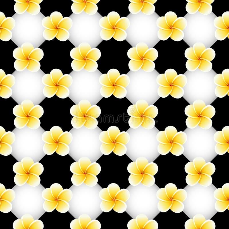 Άνευ ραφής σχέδιο με τα λουλούδια Plumeria Frangipani στη γραπτή σκακιέρα διανυσματική απεικόνιση