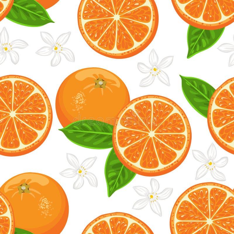 Άνευ ραφής σχέδιο με τα πορτοκάλια, τα πράσινα φύλλα και τα λουλούδια στο άσπρο υπόβαθρο ? ελεύθερη απεικόνιση δικαιώματος