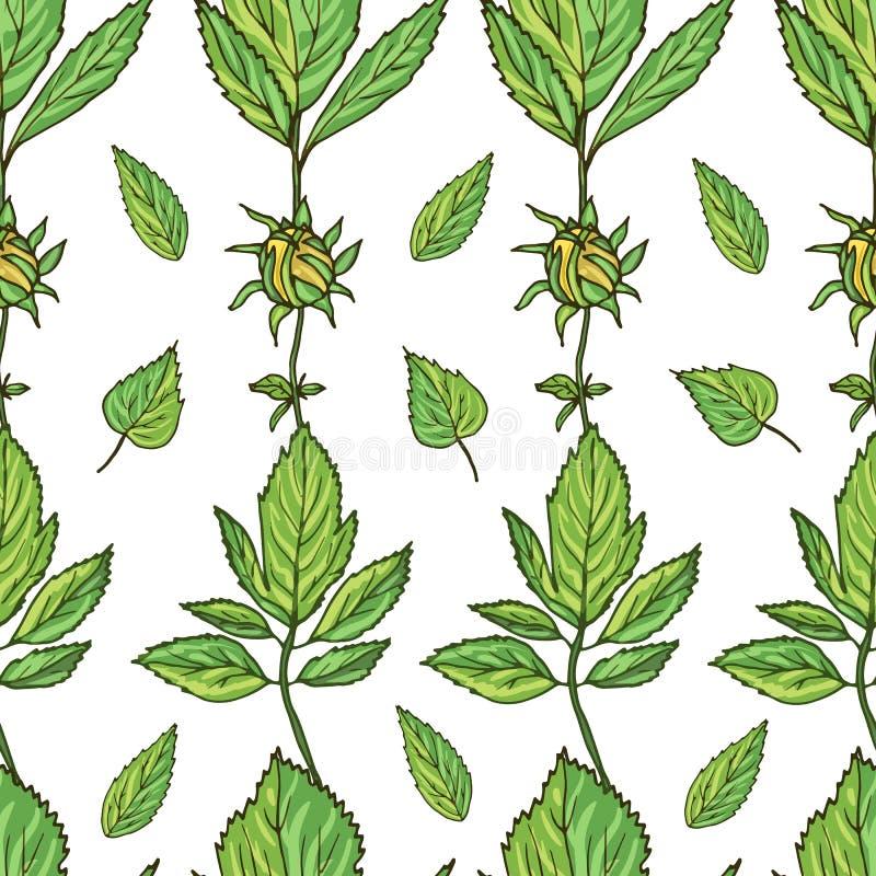 Άνευ ραφής σχέδιο με τα πράσινους φύλλα και τους οφθαλμούς λουλουδιών ελεύθερη απεικόνιση δικαιώματος