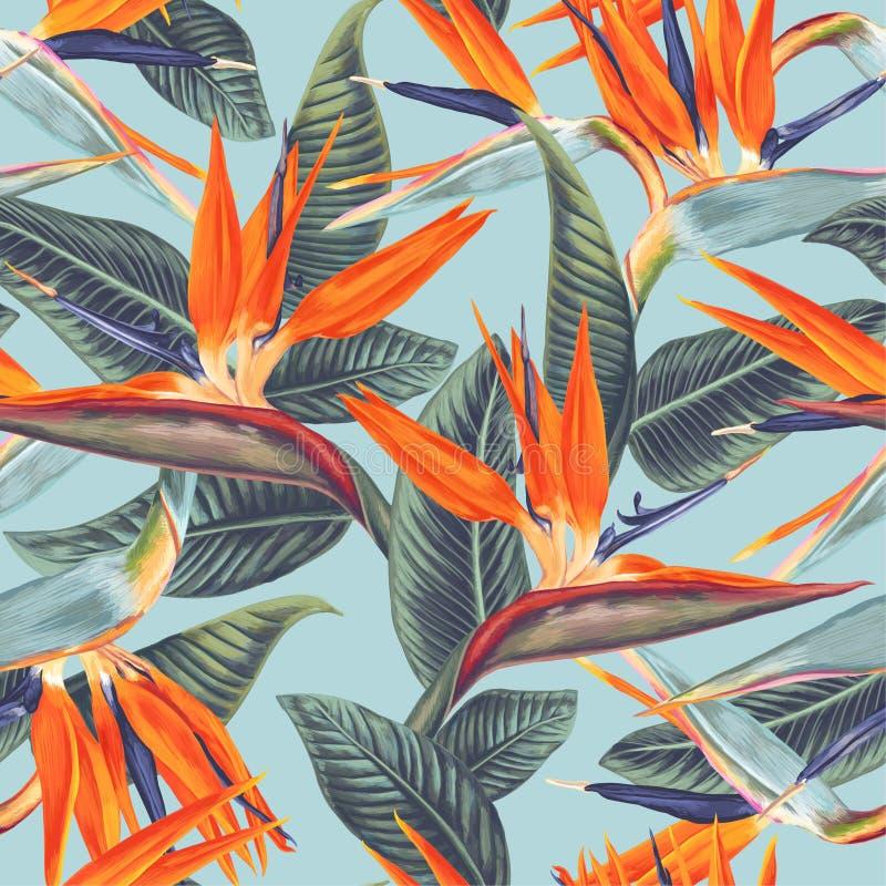 Άνευ ραφής σχέδιο με τα τροπικά λουλούδια και τα φύλλα Strelitzia Reginae ελεύθερη απεικόνιση δικαιώματος