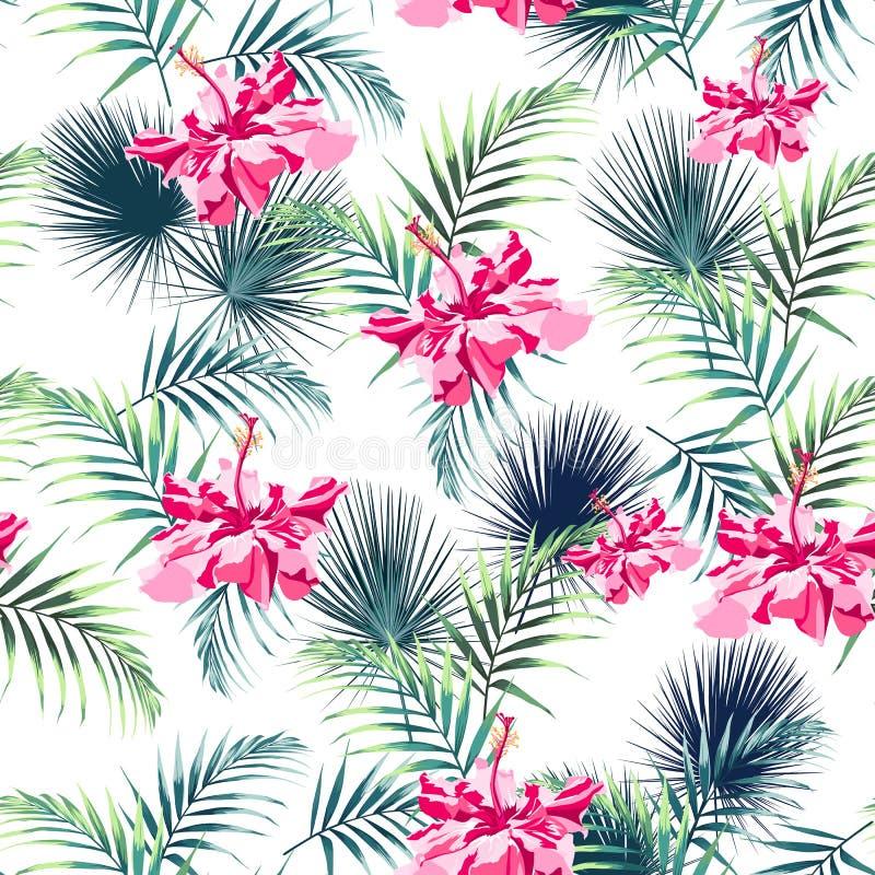 Άνευ ραφής σχέδιο με τα τροπικά λουλούδια φύλλων και ρόδινα hibiscus παραδείσου διανυσματική απεικόνιση
