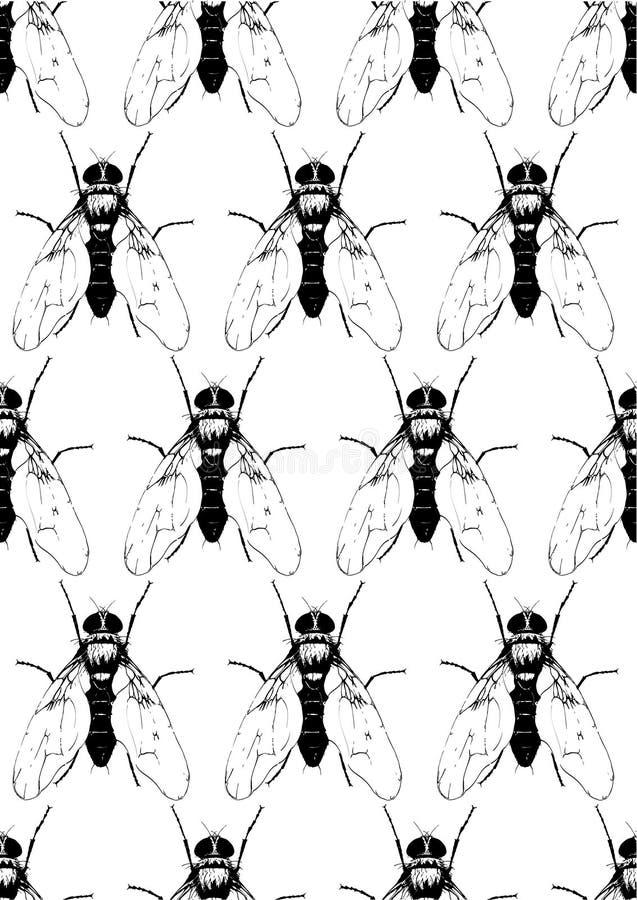 Άνευ ραφής σχέδιο με τις μαύρες μύγες απεικόνιση αποθεμάτων