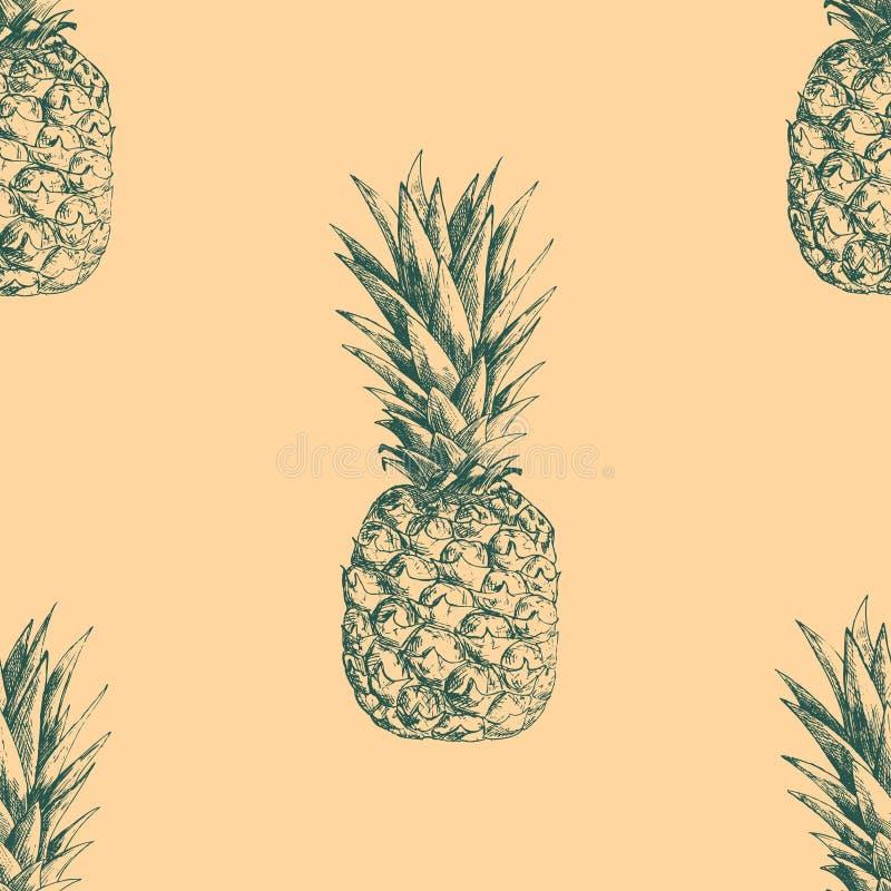 Άνευ ραφής σχέδιο με τους ανανάδες Συρμένη χέρι σύσταση διανυσματική απεικόνιση