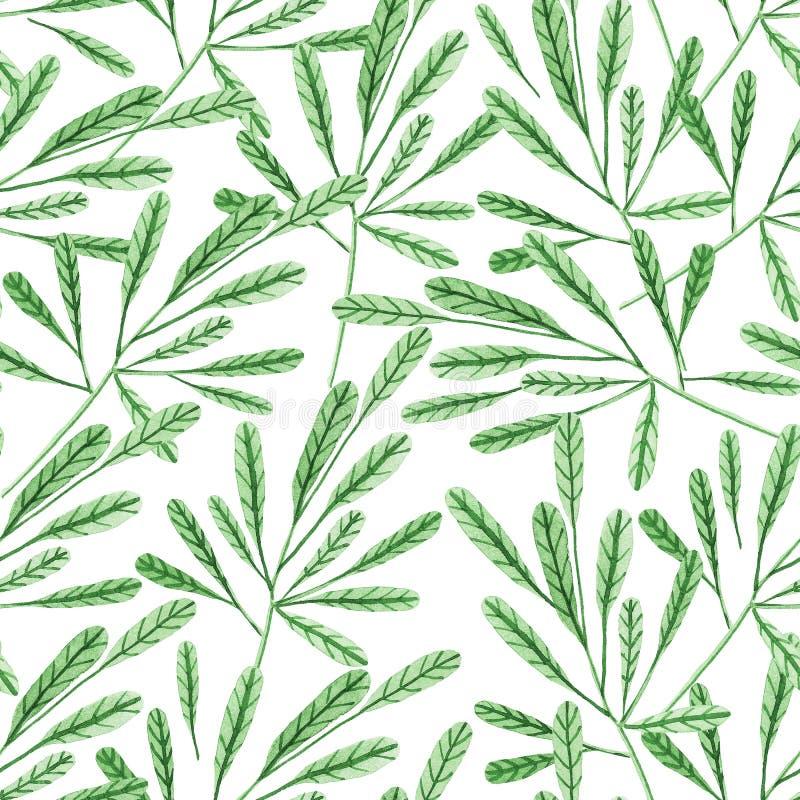 Άνευ ραφής σχέδιο με τους πράσινους κλάδους watercolor στοκ φωτογραφίες
