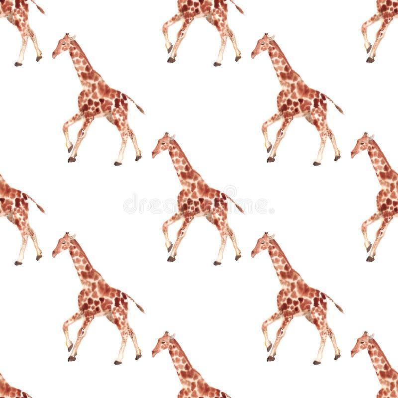 Άνευ ραφής σχέδιο με giraffe απεικόνιση αποθεμάτων