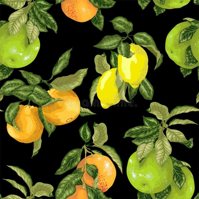 Άνευ ραφής σχέδιο στη διανυσματική ρεαλιστική απεικόνιση με pomelo, το πορτοκάλι, το γκρέιπφρουτ και το λεμόνι στα φωτεινά χρώματ διανυσματική απεικόνιση