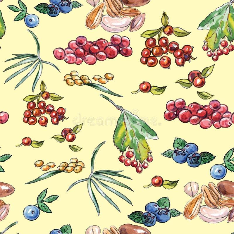 Άνευ ραφής σχέδιο των μούρων και των καρυδιών διανυσματική απεικόνιση