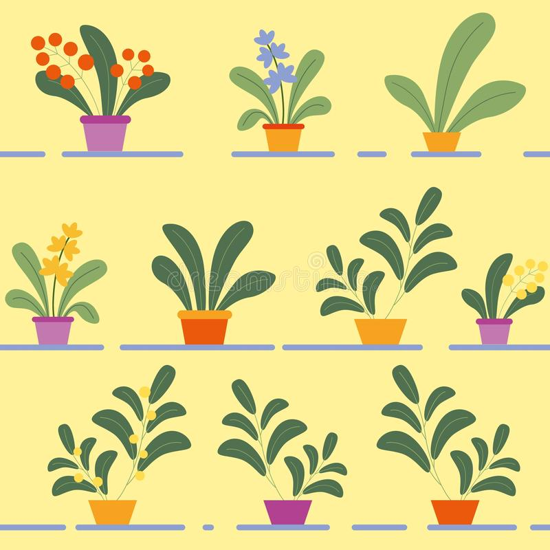 Άνευ ραφής σχέδιο των σε δοχείο ανθίζοντας φυτών σπιτιών διανυσματική απεικόνιση