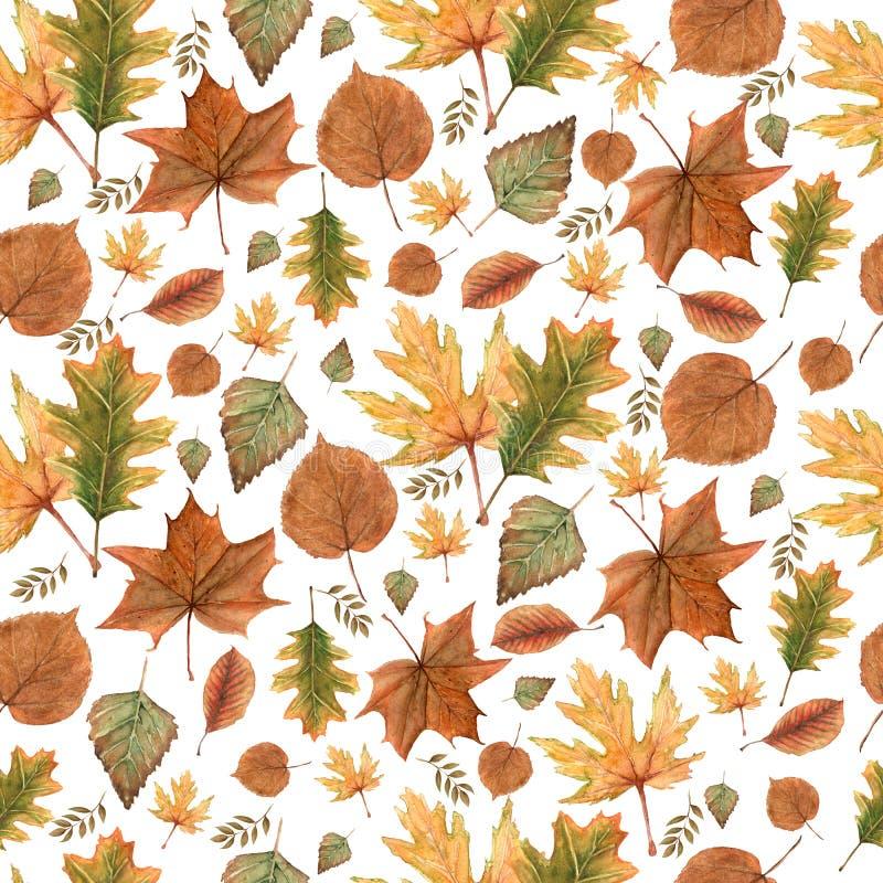 Άνευ ραφής σχέδιο των φύλλων πτώσης φθινοπώρου, φυσικοί κλάδοι, ζωηρόχρωμα χορτάρια, χέρι που σύρεται στο watercolor Κομψό υπόβαθ ελεύθερη απεικόνιση δικαιώματος
