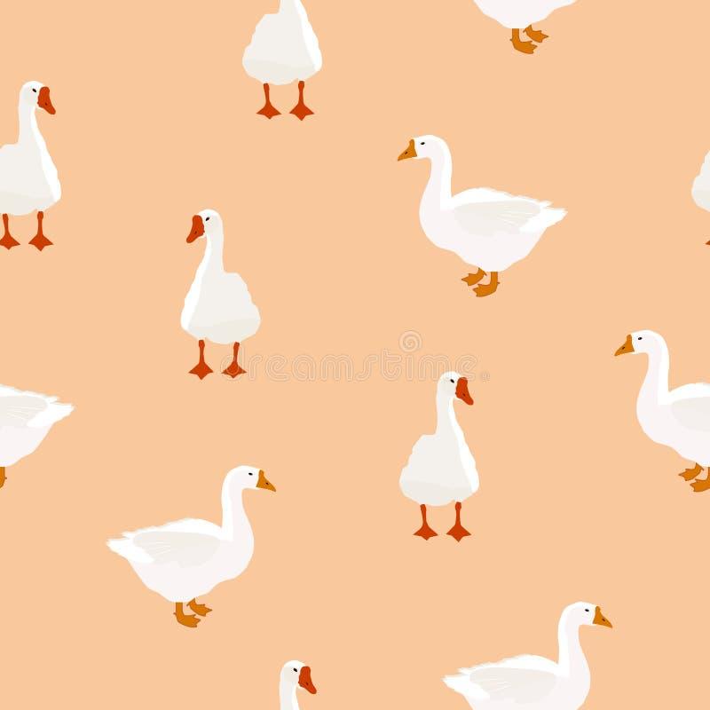 Άνευ ραφής σχέδιο χήνων αγροτικών πουλιών άσπρο μπεζ, διανυσματικό eps 10 ελεύθερη απεικόνιση δικαιώματος