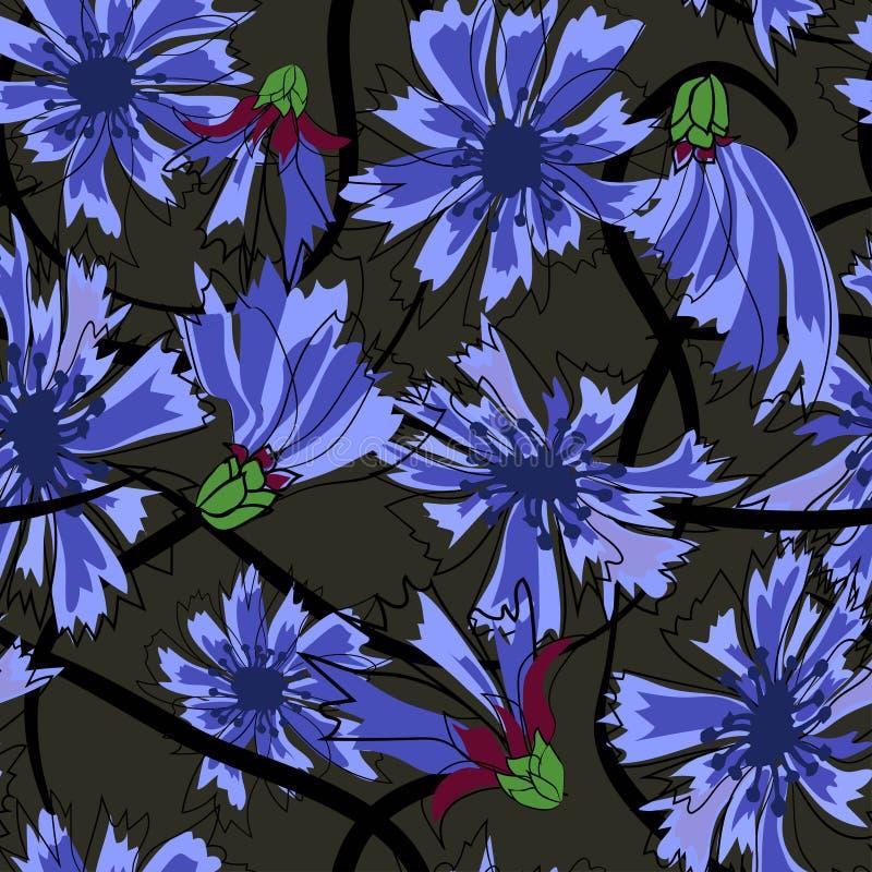 Άνευ ραφής σχέδιο Cornflowers Απεικόνιση στο μαύρο υπόβαθρο απεικόνιση αποθεμάτων