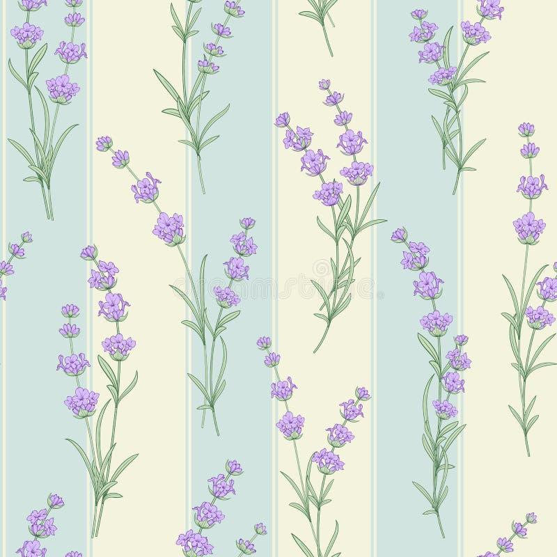 Άνευ ραφής σχέδιο Lavender του λουλουδιού ελεύθερη απεικόνιση δικαιώματος