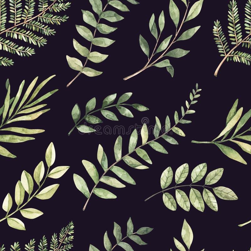 Άνευ ραφής σχέδιο watercolor άνοιξη Βοτανικό υπόβαθρο με τον ευκάλυπτο, τους κλάδους, τη φτέρη και τα φύλλα Απεικόνιση πρασινάδων απεικόνιση αποθεμάτων