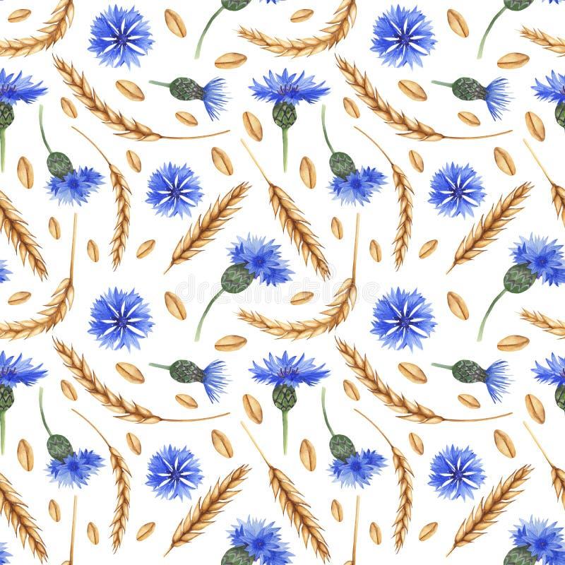Άνευ ραφής σχέδιο Watercolor με τα αυτιά του σίτου και των cornflowers ελεύθερη απεικόνιση δικαιώματος