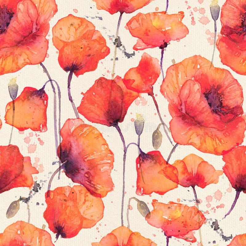 Άνευ ραφής σχέδιο Watercolor με τις άγριες κόκκινες παπαρούνες, τρύγος backg ελεύθερη απεικόνιση δικαιώματος