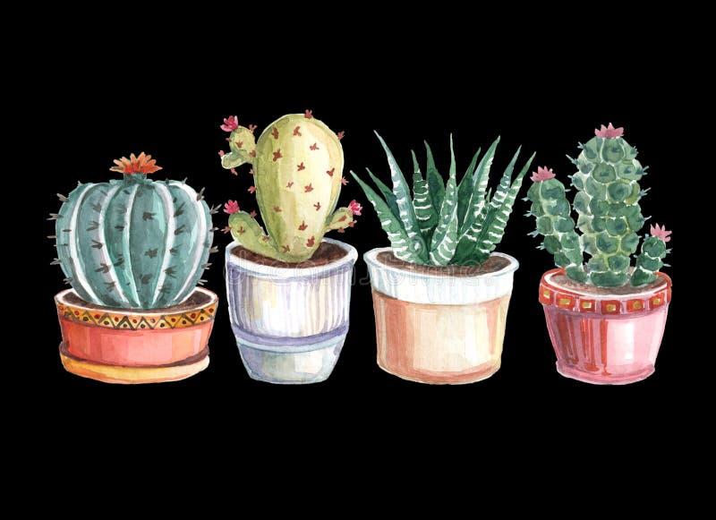άνευ ραφής σχέδιο watercolor των κάκτων και succulents watercolor στοκ φωτογραφίες