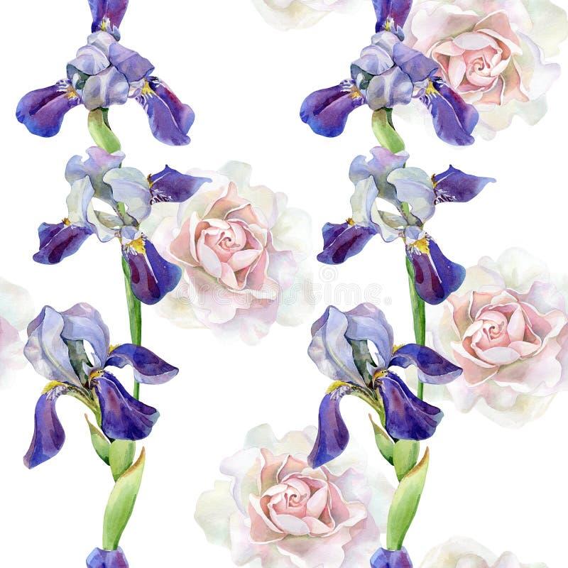Άνευ ραφής σχέδιο watercolor των τριαντάφυλλων, ίριδες ελεύθερη απεικόνιση δικαιώματος