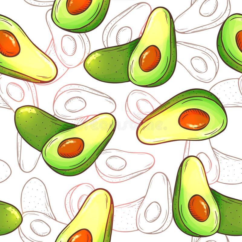 Άνευ ραφής σχέδιο αβοκάντο Ολόκληρα αβοκάντο, τεμαχισμένα κομμάτια, περικοπή μισή με το σκίτσο σπόρου Τροπικό χέρι θερινών φρούτω ελεύθερη απεικόνιση δικαιώματος