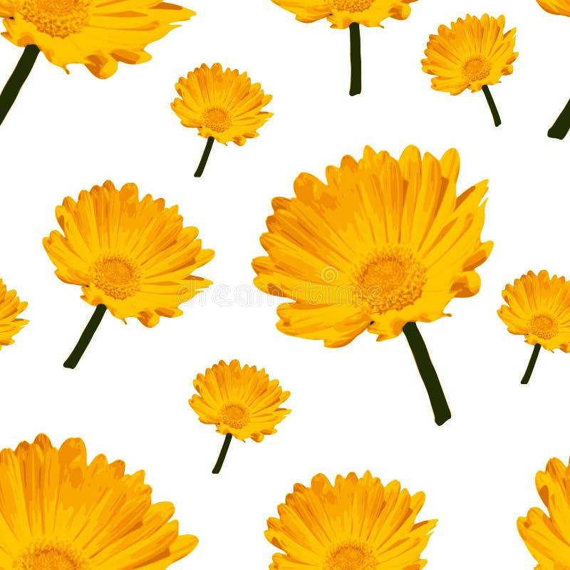 Άνευ ραφής σχέδιο κομψότητας λουλουδιών Περίληψη διανυσματική απεικόνιση
