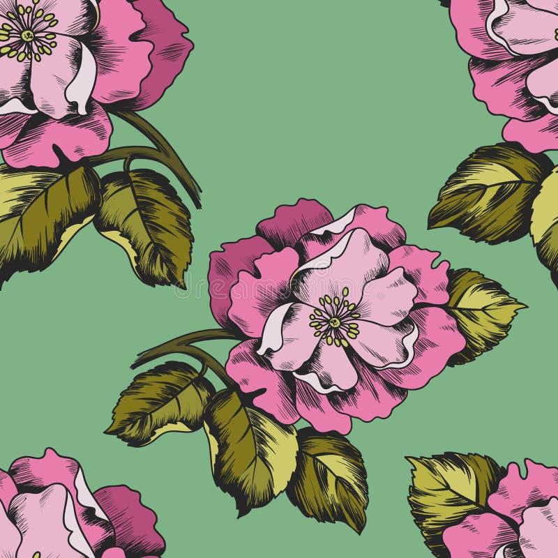 Άνευ ραφής σχέδιο με τα λουλούδια peons για την εκτύπωση σε χαρτί ή το ύφασμα απεικόνιση αποθεμάτων