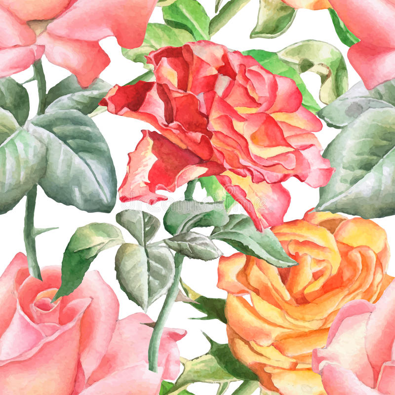 Άνευ ραφής σχέδιο με τα ρεαλιστικά τριαντάφυλλα watercolor διανυσματική απεικόνιση
