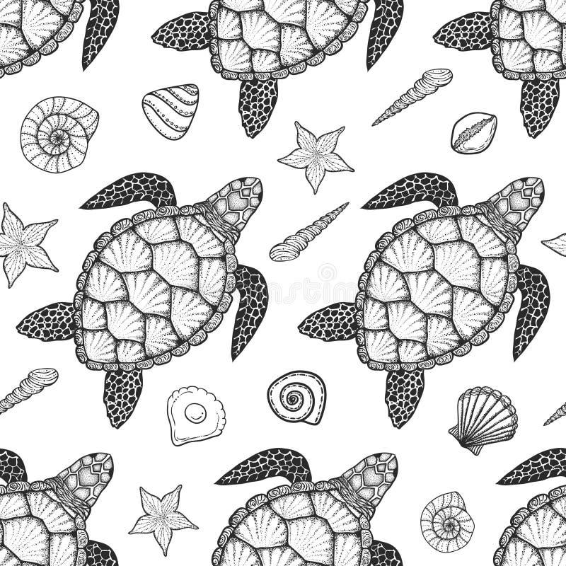 Άνευ ραφής σχέδιο με τη χελώνα θάλασσας και κοχύλια στο ύφος τέχνης γραμμών Συρμένη χέρι διανυσματική απεικόνιση Ωκεάνια στοιχεία διανυσματική απεικόνιση