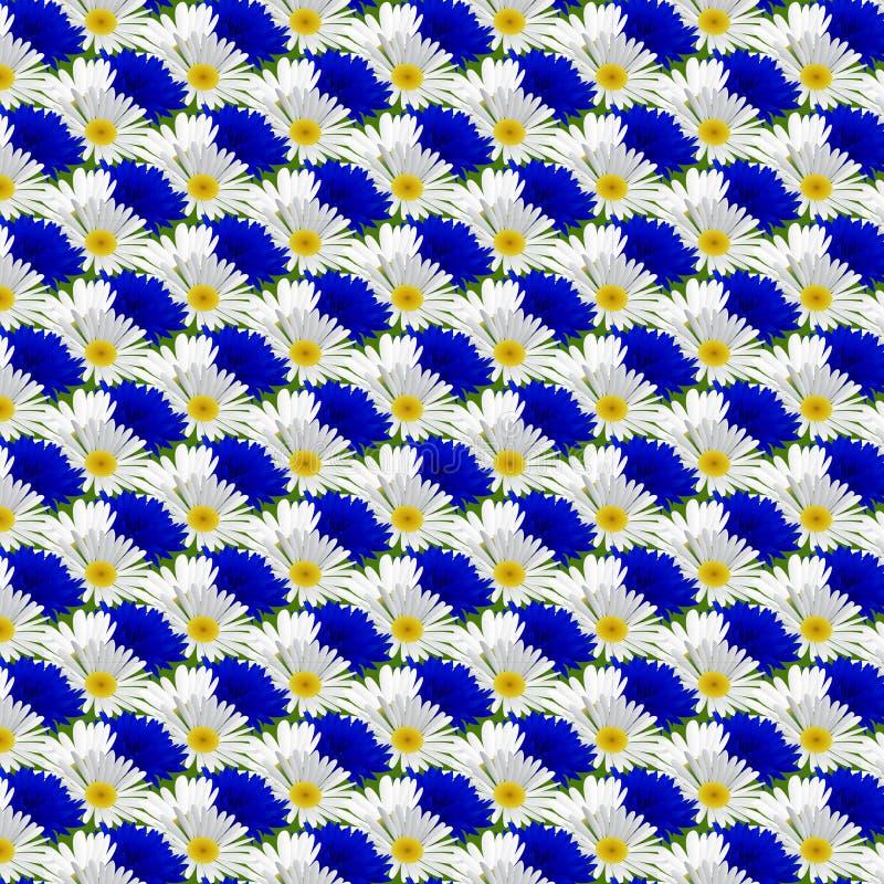 Άνευ ραφής σχέδιο με camomile λουλουδιών ελεύθερη απεικόνιση δικαιώματος