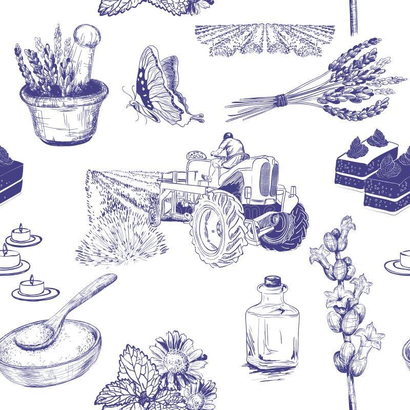 Άνευ ραφής σχέδιο με lavender τα λουλούδια καθορισμένα ελεύθερη απεικόνιση δικαιώματος
